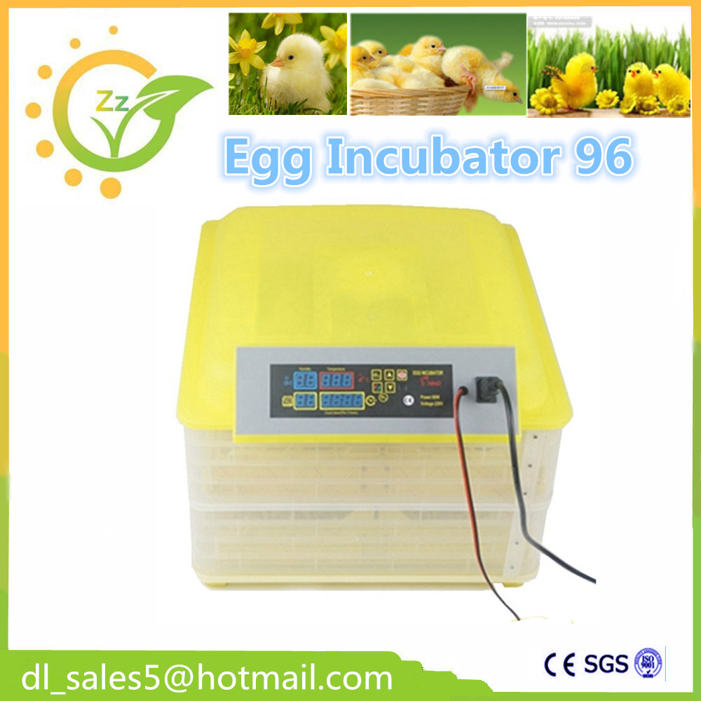 Chickens Automatically Eggs Poultry Incubation Equipment pammy riggs keeping chickens for dummies