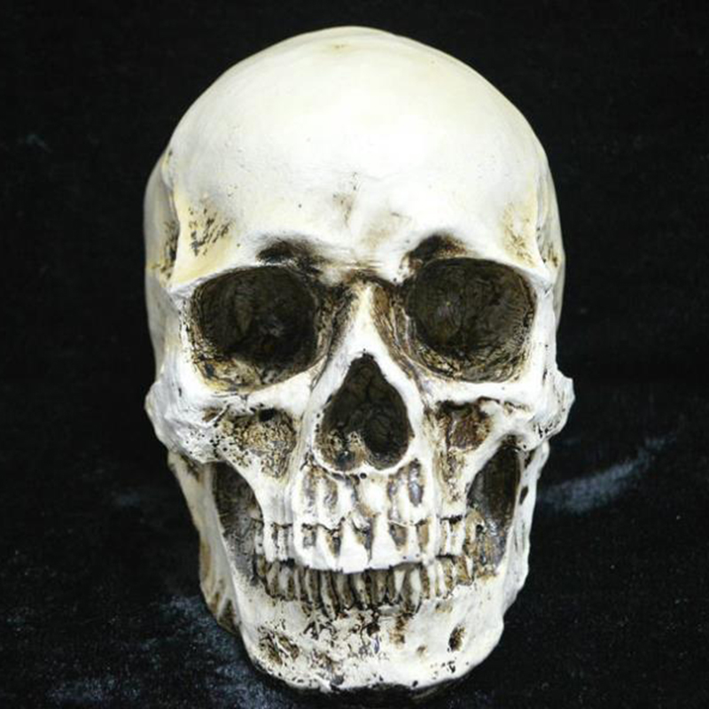 Resin Craft Statues For Decoration Skull Creative Skull Statue Sculpture Home Decoration Accessories Halloween Decoration