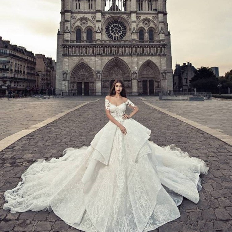 Vivian S Bridal 2019 Luxurious Illusion Mesh Cathedral Train