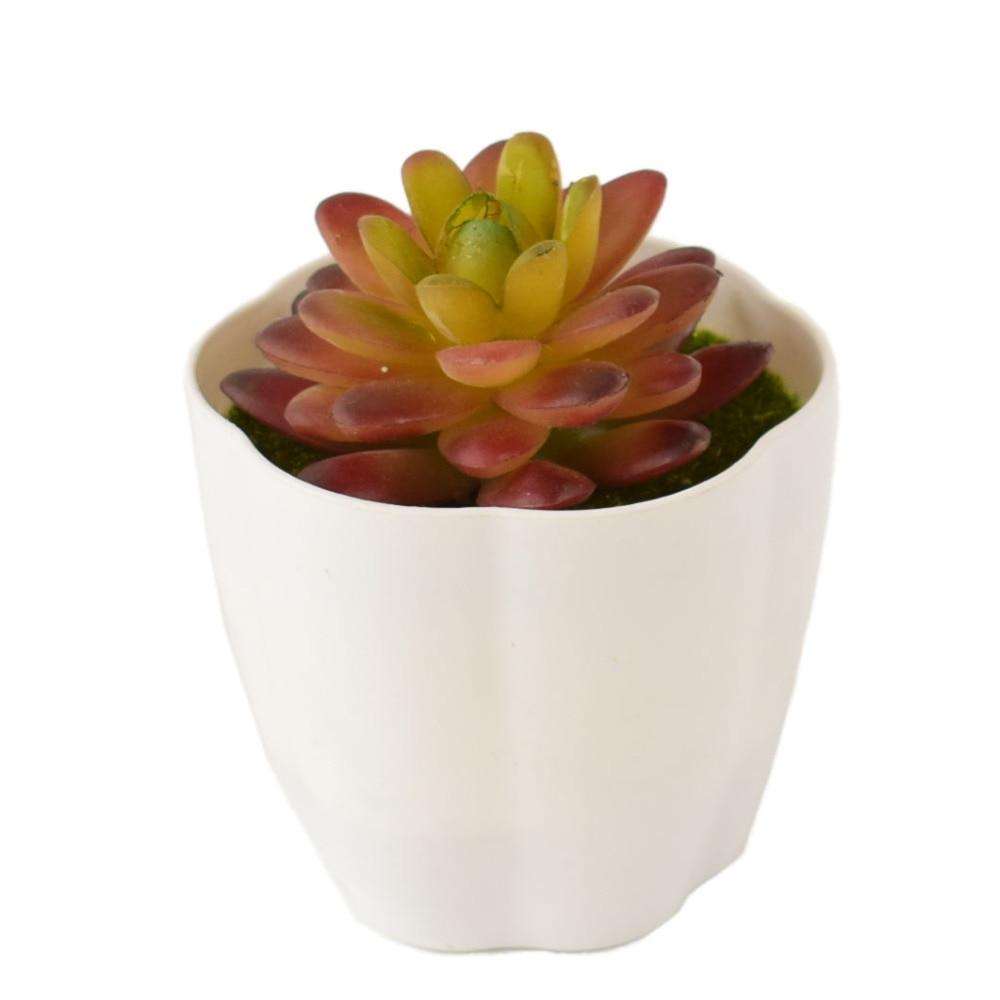 Mini Succulents Buatan Tanaman Hijau dengan Putih Vas Meja Makan Dalam  Ruangan Taman Plastik pot Bunga 77cbcc28a4