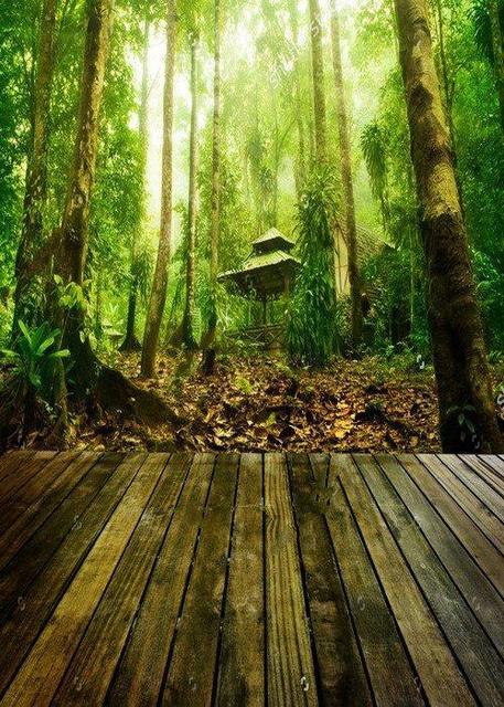 jungle theme scene tree forest wood floor photography studio