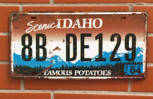 Vintage Metal Car Signs : Hot sale car no license metal plates plaques vintage