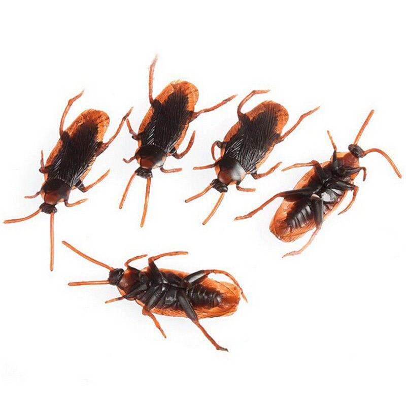 10 Pcs Special Lifelike Model Simulation Fake Rubber Cockroach Bug Roaches Toy Novelty Prank Funny Trick Joke Toys цена и фото