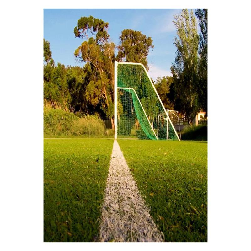 ALLOYSEED 150X90 cm Porta Da Calcio Tema Foto Sfondo Campo di Calcio Verde Studio Contesto Fotografia Puntelli Decorazione Della Parete 3x5FT