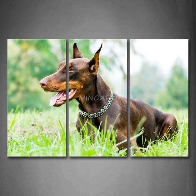 3 Piece Wall Art Painting Doberman Pinscher Sit In Grass Open Mouth Picture Print On Canvas Animal 4 The Picture