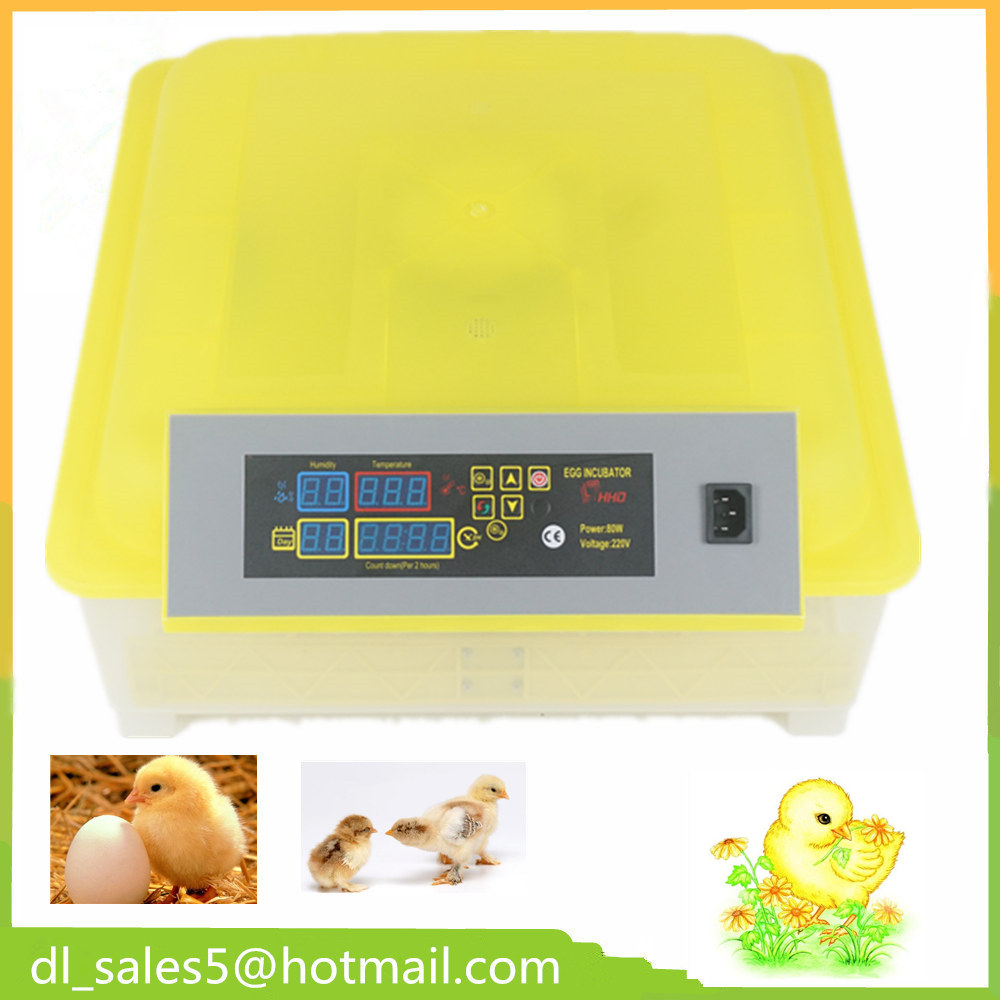 fully 48 automatic egg incubator free shipping chicken egg hatchery machine hatching eggs small chicken poultry hatchery machines 48 automatic egg incubator 220v hatching for sale