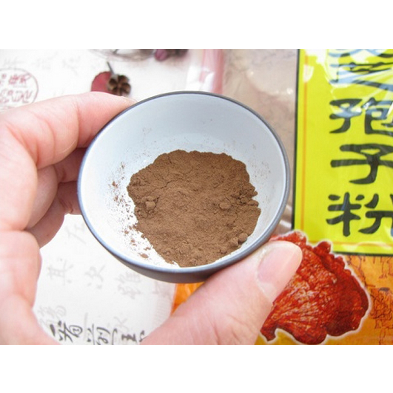 500g*2bag(1kg) Ganoderma Lucidum, Lingzhi, Wild reishi Spore Powder herbal medicine, Anti-cancer anti-aging ganoderma @ - Hanth shop store