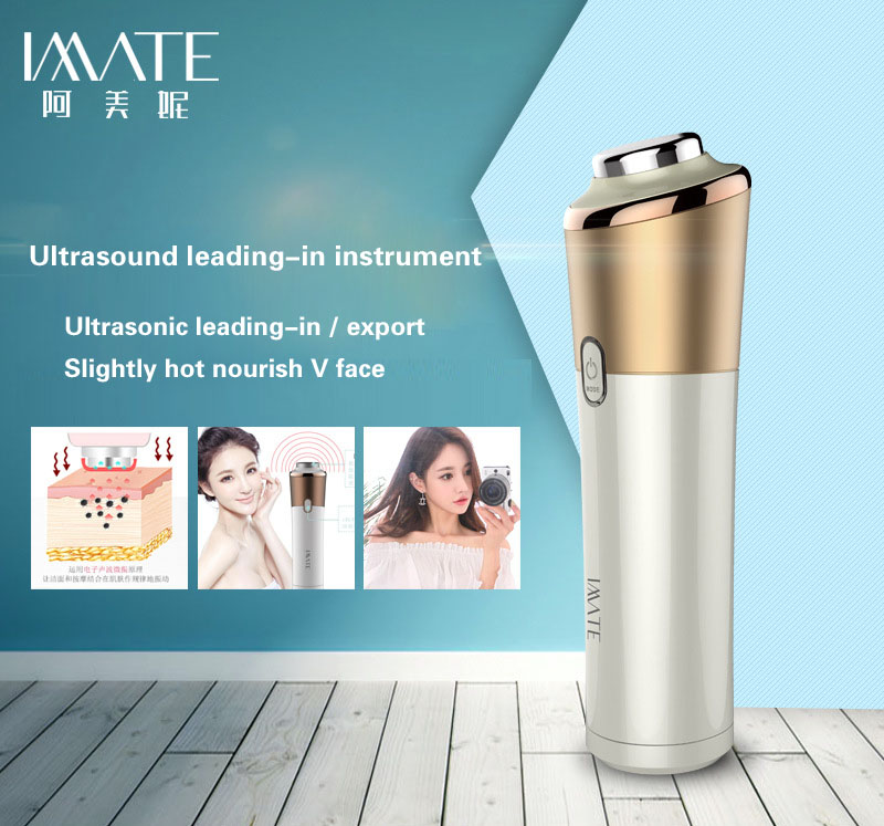 ultrasonic import instrument ion leading-in and export import instrument Beauty instrument household