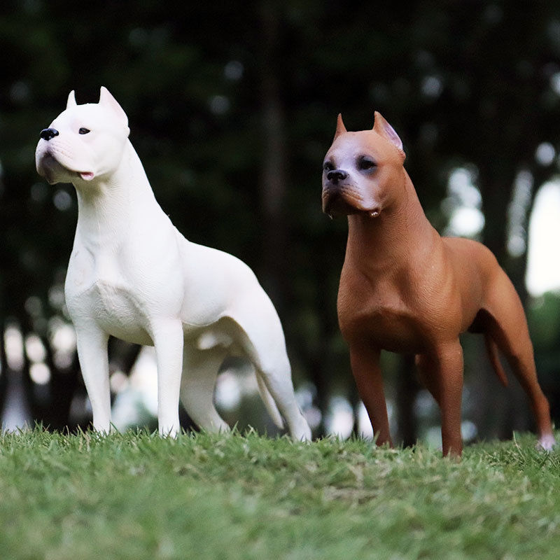 1 PCS Hunter Dogo Argentinos Dog Pet Animal Figure Model Adult Kids Collection Toys Birthday Gift Home Decor