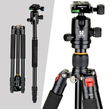 DIGIPOD Professional Portable Camera Aluminum Tripod Monopod with Ball Head for DSLR Cameras  A254FM0 + BH-52A