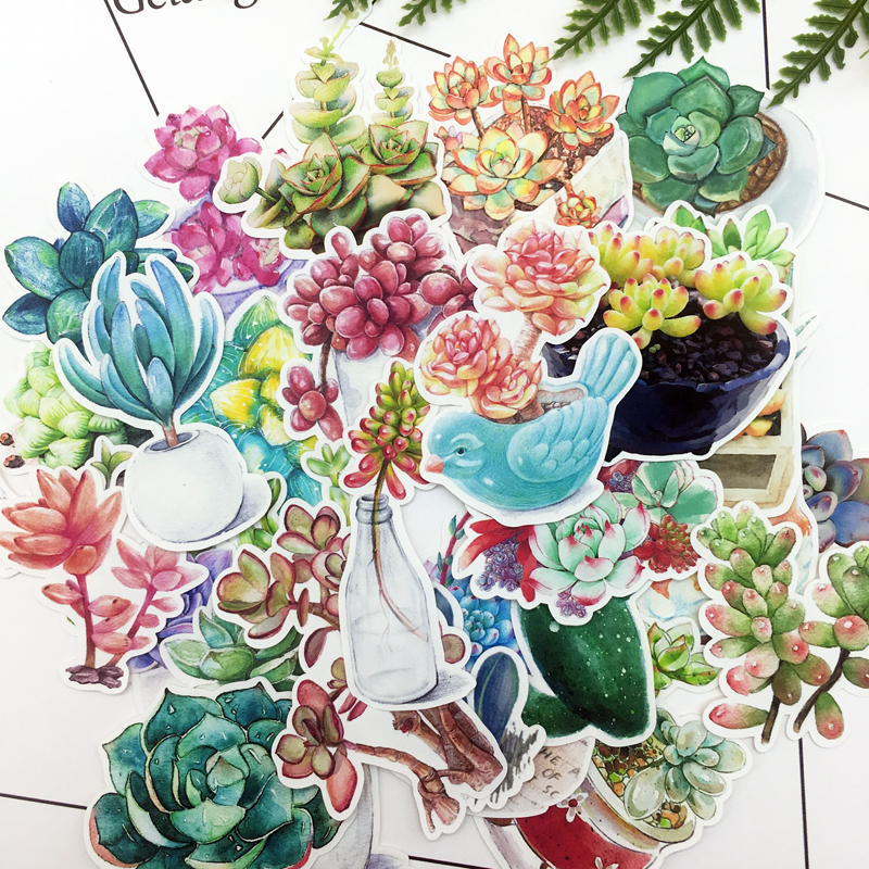 27pcs Hand Drawing Succulent plants  Cactus sticker Diary Notebook Planner Scrapbooking  thin Paper Sticker27pcs Hand Drawing Succulent plants  Cactus sticker Diary Notebook Planner Scrapbooking  thin Paper Sticker