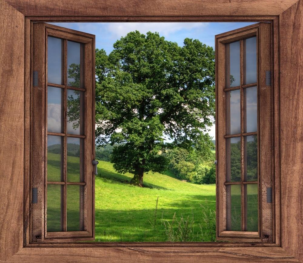 картинка фон окна если фанат спальников