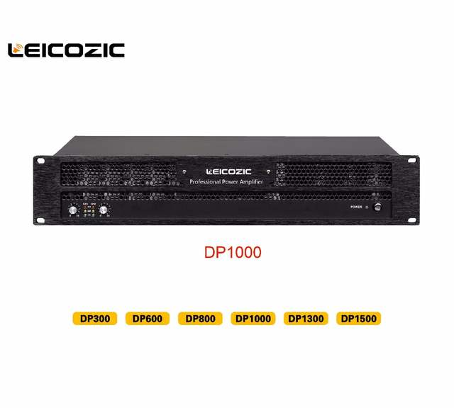 Detail Feedback Questions about Leicozic DP1000 2 Channel