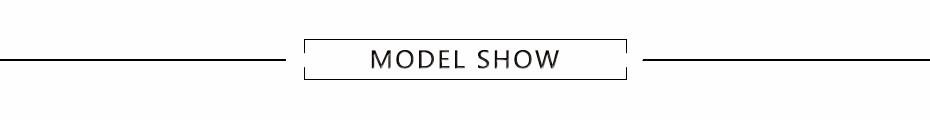 model_show-----3