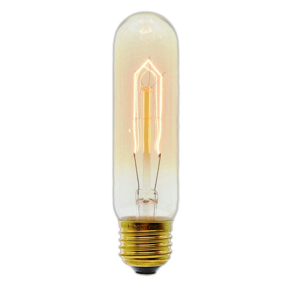 E27 Incandescent Vintage Bulb 40W 220V T10 Retro Edison Light Bulb Wholesale Price