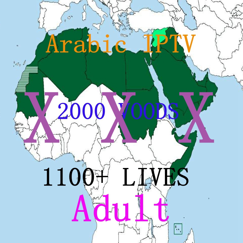 France German Arabic channels adult Sweden iptv subscription x x x 1 year iran iptv asia