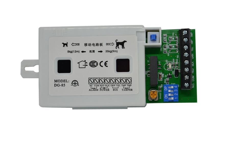 Sensor e detector