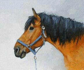 horse portrait  ORIGINAL art - TOP art oil painting--24 inch art painting # TOP animal HOME  Decor OIL ON CANVAS