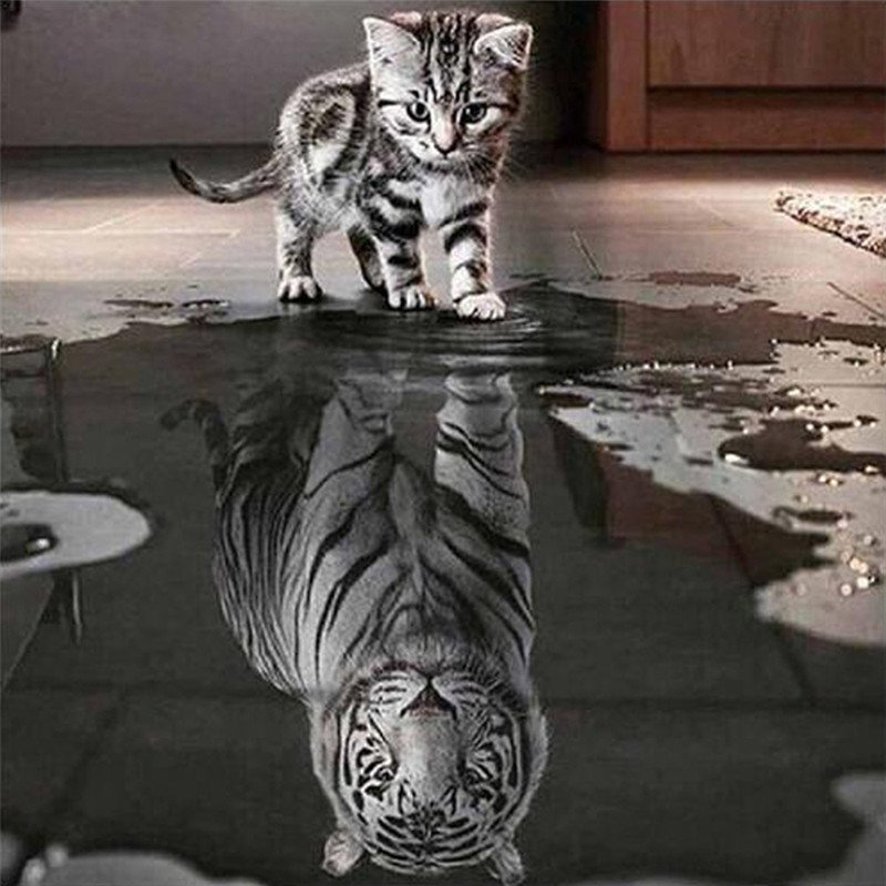 Cat and Tiger DIY 5D Diamond Embroidery Painting Cross Stitch Home Decor Craft hot sale on F25