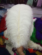 Wholesale 50 PCS, 22-24 inches / 55~60cm natural white ostrich feathers, feather wedding center focus.