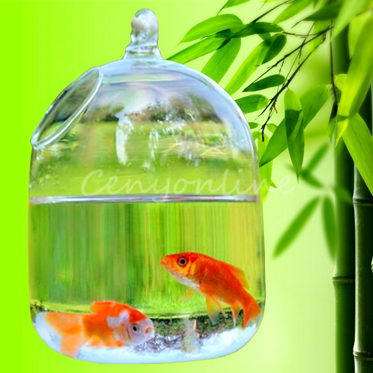 Fish Tank Mini Aquarium Glass Vase Flower Hydroponic Container Pot L 16cm W 10cm