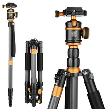QZSD Q888C Lightweight Tripod For Digital Video DSLR Camera Stand Monopod With Quick Release Tripode Action Camera Accessories