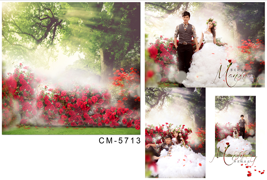Customize vinyl cloth print red roses park wallpaper photo studio background for portrait photography backdrops CM-5713 customize vinyl cloth print 3 d night city scenery wallpaper photo studio background for portrait photography backdrops cm 5883