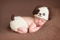 Free Shipping Cartoon Baby Puppy Hat Beanie Crochet Dog Hat Diaper Cover Baby Set Newborn Knitting