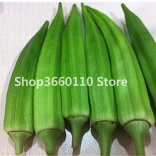 30 pcs Rare Okra Bonsai Green Healthy Vegetable Delicious DIY Home Garden Plants organic vegetable plants Free Shipping