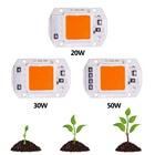 Cob Led Grow Light Chip Lamp Full Spectrum AC 110V 220V 20w 30w 50w DIY Indoor Plant Flower Tent Box Bloom Garden Hydroponics