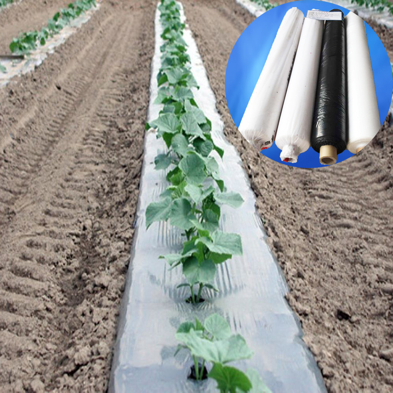Agricultural Plastic Nursery Mulch Row Cover White Black Weed Barrier Strawberry Tomato Plant Ground Film Moisture