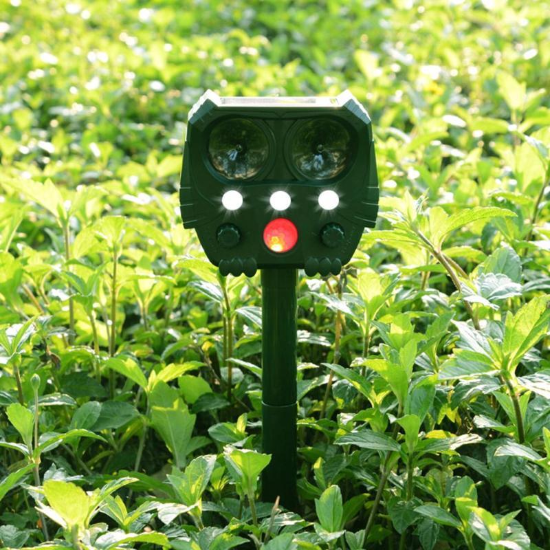 Répulsif solaire extérieur de chat de chien d'oiseau de souris de taupe ultrasonique pour la cour de jardin