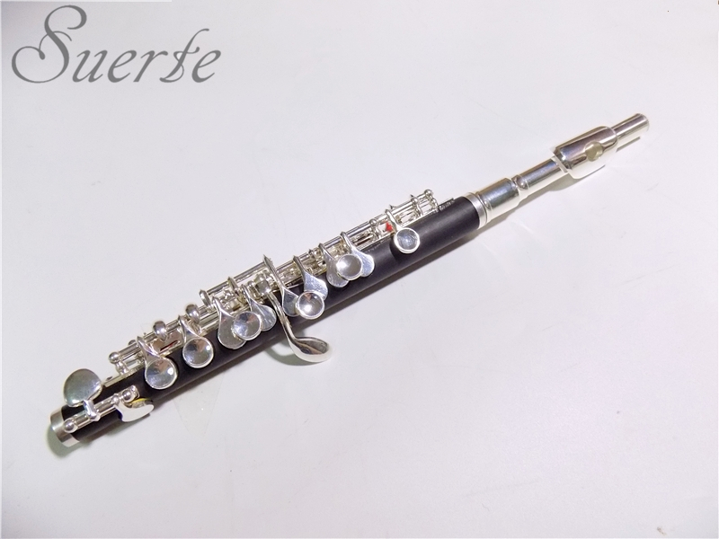 SILVER PLATE YOUR MUSICAL INSTRUMENTS