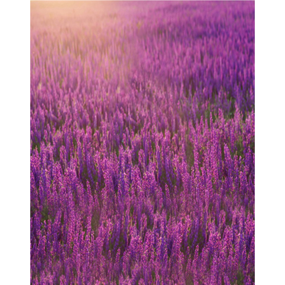Beautiful lavender backdrop photography printed purple flowers beautiful lavender backdrop photography printed purple flowers newborn baby shower props children girl floral photo background in background from consumer izmirmasajfo