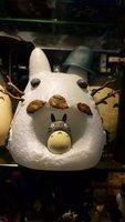 1pcs 20cm pvc Japanese anime figure Miyazaki Hayao Tonari no Totoro Piggy bank action figure collectible model toys brinquedos