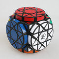Free Shipping Brand New Dayan Wheel of Wisdom Rotational Twisty Magic Cube Speed Puzzle Cubes Best Toys for kid Child