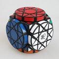 Frete Grátis Nova Marca Sinuosa Rotacional Dayan Roda da Sabedoria Magic Cube Enigma Velocidade Cubos Melhores Brinquedos para kid Criança