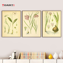 Modern canvas painting Vintage Botanical illustrations floral Retro poster and print Daffodil wall art murals chart pictures