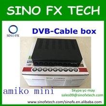 Singapur caja de cable TV receptor Amiko Mini combo Renuevan cuenta cccam cuenta 1 año de suscripción renovación renovar amiko mini combo