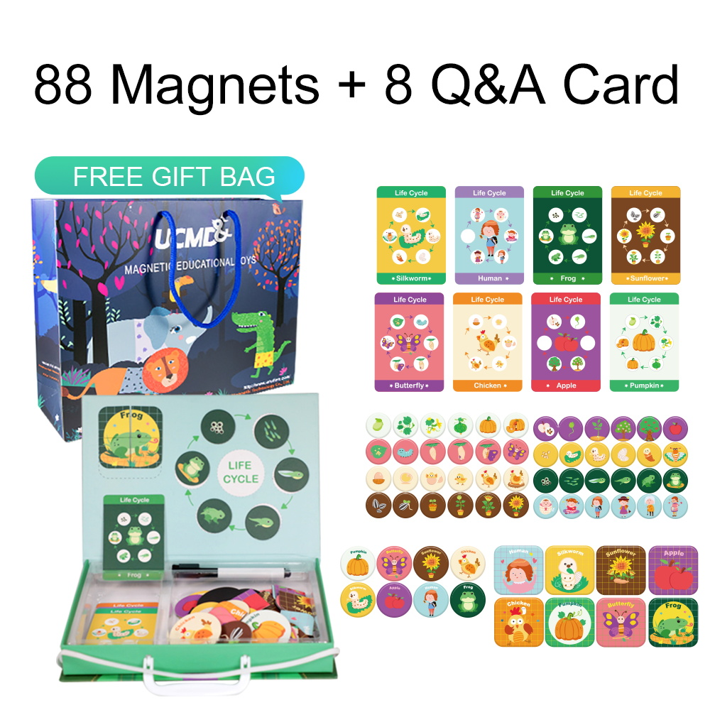 Éducation de la petite enfance jouets pour enfants Puzzle Montessori magnétique Cycle de vie penché des Puzzles de croissance humaine animale jouet éducatif