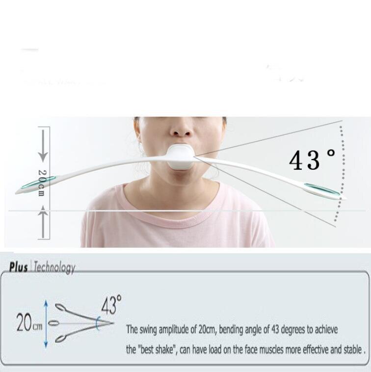 Ausgezeichnet Gesicht Knochenanatomie Fotos - Anatomie Von ...