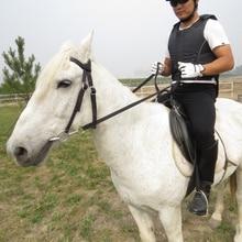 Durable caballo montar accesorios ecuestre suministros completa caballo herradura con fijo rienda suelta de alta calidad cinturón de caballo