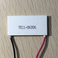 Resfriador termoelétrico retangular  envio rápido  2 peças  novo  TEC1-06306 20*40*3.5mm  para instrumento cosmético te cooler