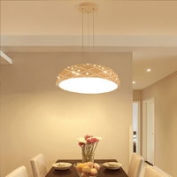 Nordic Chandelier Fixtures Novelties Restaurant Hanging Lighting Modern Creative Led Lights Diningroom Lamps