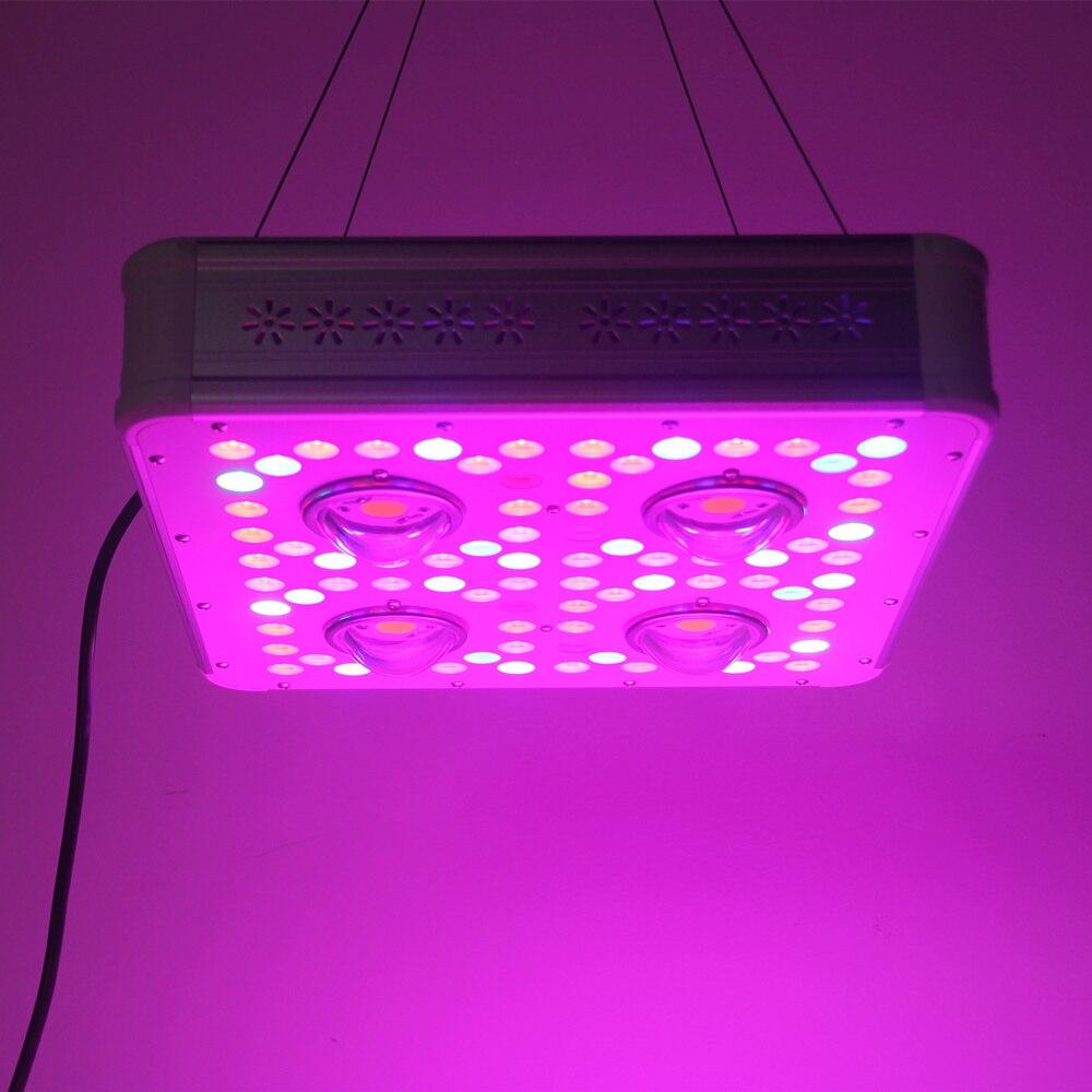 200w 300w 500w 600w 700w 800w 900w Full Spectrum Led Plant Grow Light Lamps For Flower Plant Veg Hydroponics System Grow/Tent