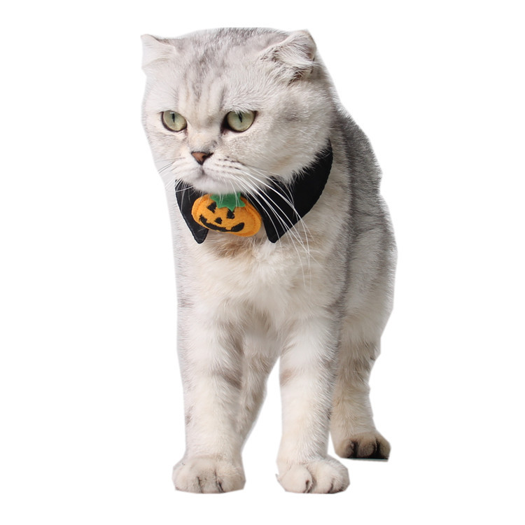 1pc Halloween Mischief Cat Small Dogs Necktie Collar Black Tie Pumpkin Bow-tie For Cat Pet Beauty Supplies #2