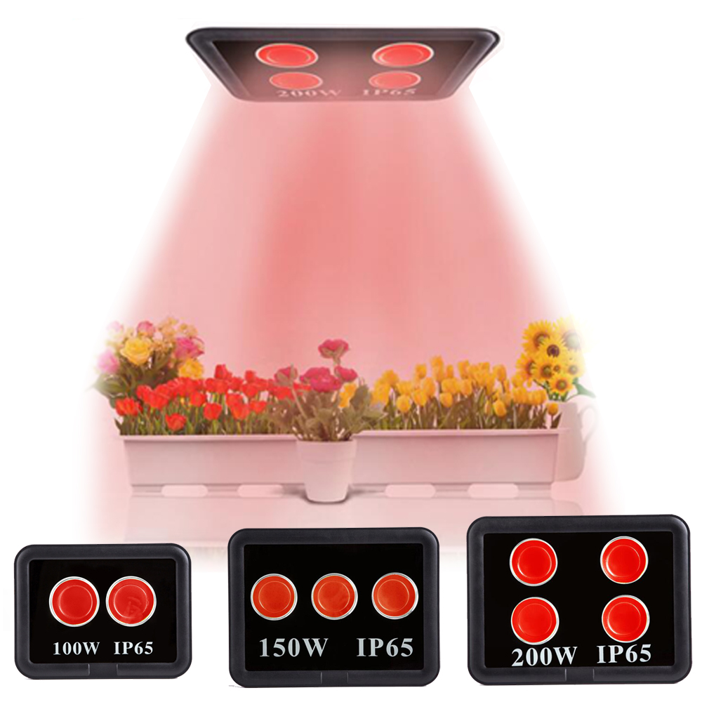 100W 150W 200W COB Led grow light Full spectrum square Plant lamp flood light Seedling growth for Indoor Plants Veg Flowering cob led grow light full spectrum actual power 50w 100w 150w 200w led plant grow lamp for indoor plants veg