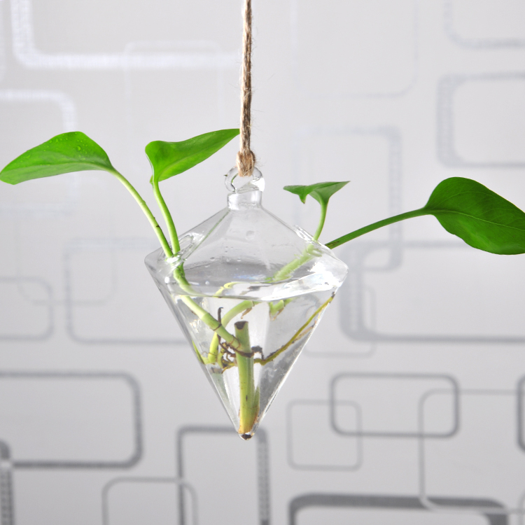 Hanging Vase Hanging Terrarium Hanging Glass Planter Clear Flower Planter Container Home Decoration China
