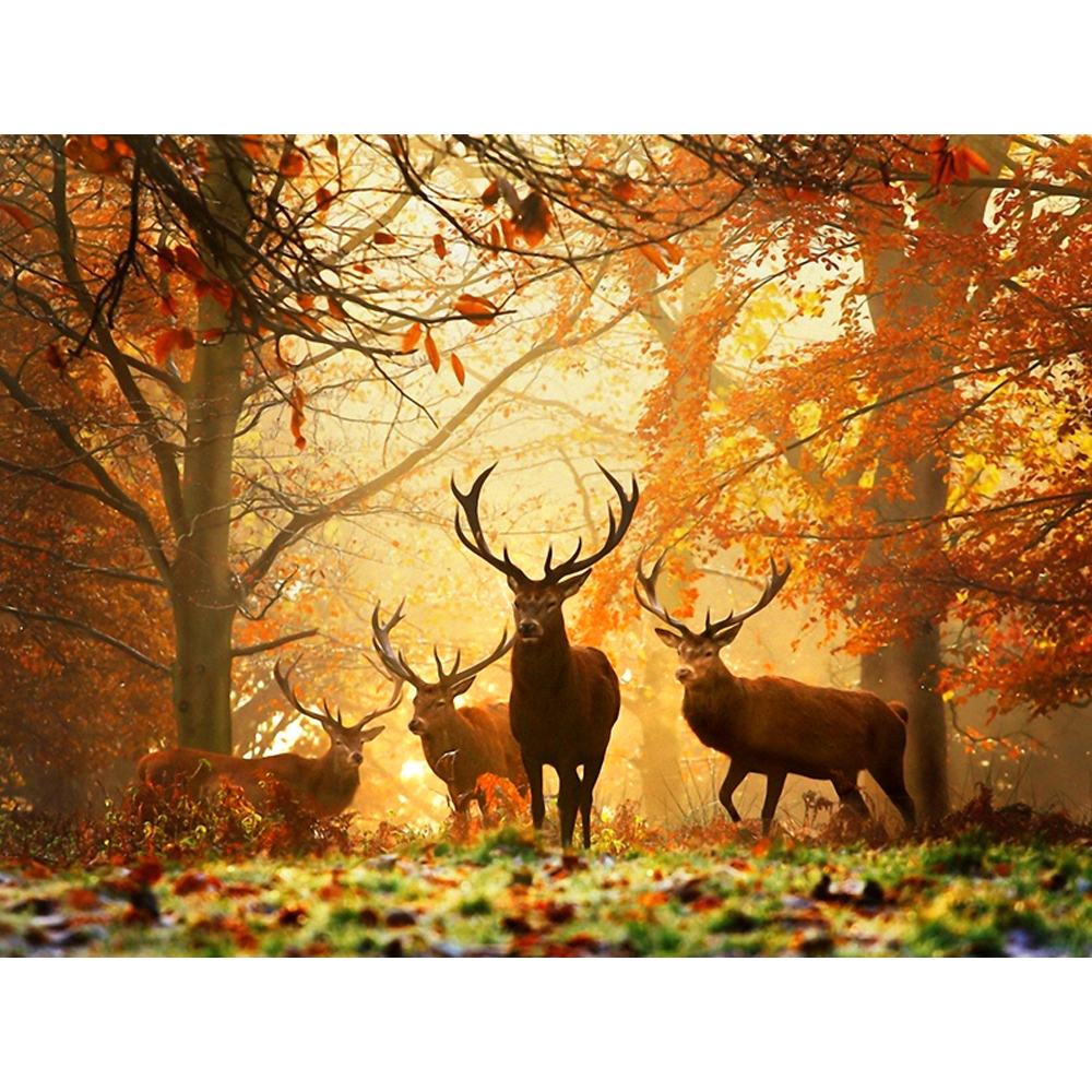 Diamond Painting Full Square Drill 5D DIY Daimond Embroidery forest Deers Cross Stitch Rhinestone Mosaic Painting Gift LE00433