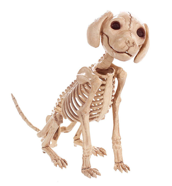 High Qualtity Skeleton Dog Puppy Skeleton Animal Bones for Horror Halloween Party Home Decor Decoration Accessories Decoration